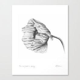 the neighbour's poppy Canvas Print