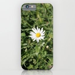 lonely flower, color photograph iPhone Case