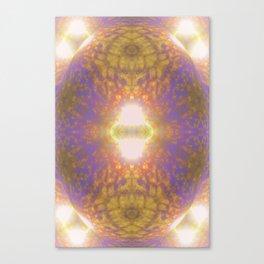 Shiny egg /segmentation Canvas Print