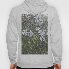 Almond tree branches and flowers Hoody