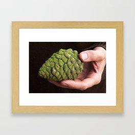 Pine Cone Gathering in California Framed Art Print