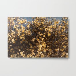 Tiny Yellow Nuggets Metal Print