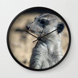 Cute Meerkat Wall Clock
