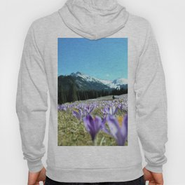 crocuses in the Chochołowska Valley Hoody
