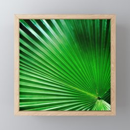 Green Angles Framed Mini Art Print