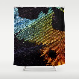 Vibrant Iridescence of The Madagascan Sunset Moth Shower Curtain