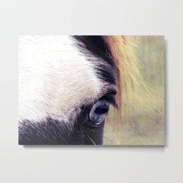 Blue Horse Eye Metal Print