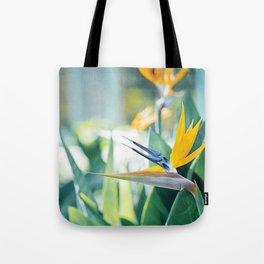 Bird of Paradise Photography, Green Orange Aqua Blue, Tropical Flower Nature Botanical Tote Bag