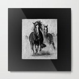 Black Beauty - 224 Metal Print