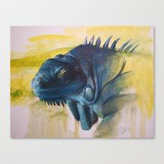 Green Iguana (Iguana iguana) Canvas Print