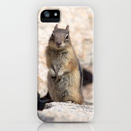 Watercolor Golden-Mantled Ground Squirrel 07, Dunraven Trail, Colorado, Pay Attention! iPhone Case