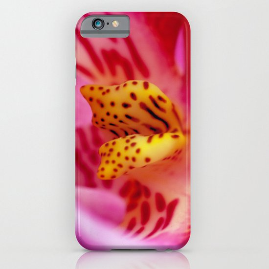 orchid PHALENOPSIS 2 iPhone & iPod Case