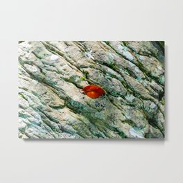 Rebellious Red Leaf Metal Print