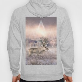 Stillness of Winter Hoody