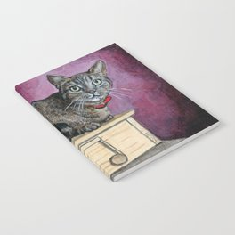 Brown Tabby Cat sitting on Music Box Notebook