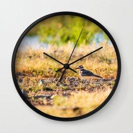 The Killdeer Wall Clock