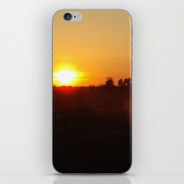 Sunset trees iPhone Skin