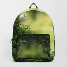 Greenpeace Backpack