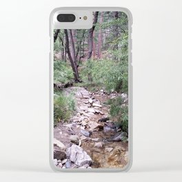 Mt. Lemmon's Wonders Clear iPhone Case