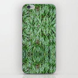 Tropical Palm Tree iPhone Skin