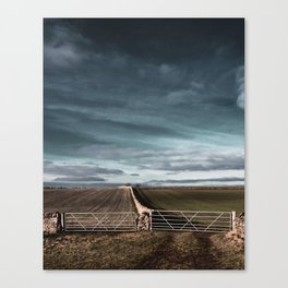 ways to make it through the wall... Canvas Print