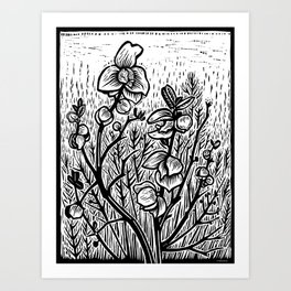 Pawpaw Art Print