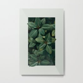 Growth III Metal Print
