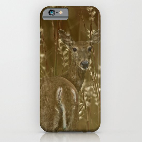 Hidden iPhone & iPod Case