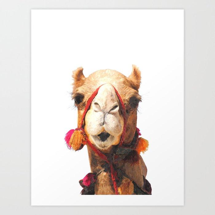 Camel Portrait Art Print