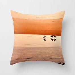 Seagull Huddle Throw Pillow