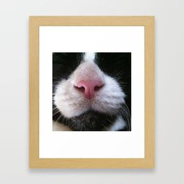 cutest little nose Framed Art Print