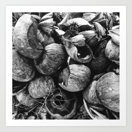 Coconut Shell Black and White Art Print