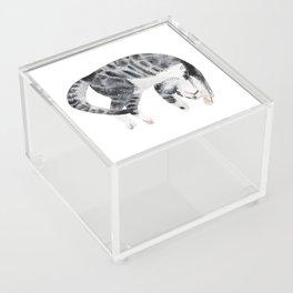 Yoga cat Acrylic Box