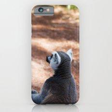 Lemur Catta III Slim Case iPhone 6s
