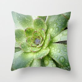 Succulent Rain Drops Throw Pillow