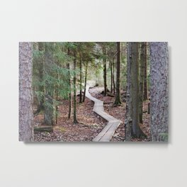 Duckboards to deep forest Metal Print
