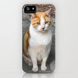 Paw Patrol iPhone Case