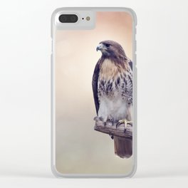 Red-tailed hawk Clear iPhone Case