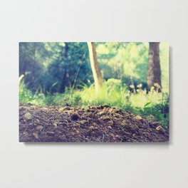 Welcome new day Metal Print