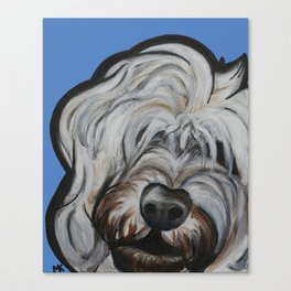 Louie Canvas Print