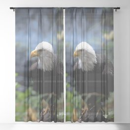 American Bald Eagle Forest Waterfall Sheer Curtain