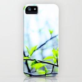 Spring pastel iPhone Case