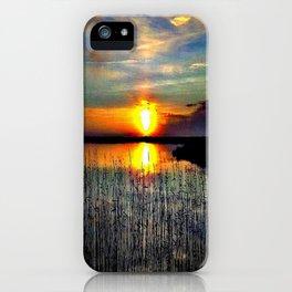 Cabsink16DesignerPatternNCL iPhone Case