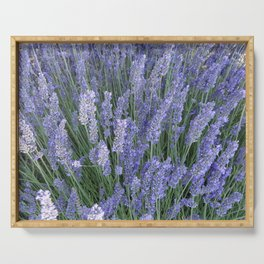 Lavender Fields Forever Serving Tray