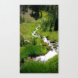 (#124) A Winding Path Canvas Print