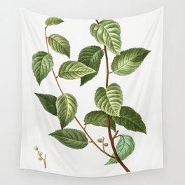 Planer tree (Planera ulmifolia) from Traite des Arbres et Arbustes que lon cultive en France en plei Wall Tapestry