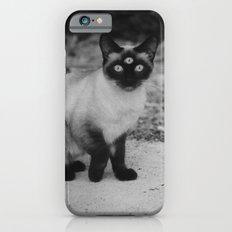 Meow iPhone 6s Slim Case