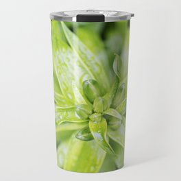 Asiatic Lily Buds Travel Mug
