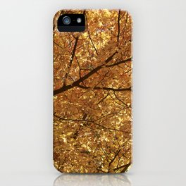 The colour tree iPhone Case