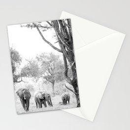 Luangwa Family Stationery Cards